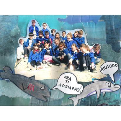 Quando in Val d'Orcia c'era il  mare ... ed a Lucciola Bella  gli squali mangiavano i delfini